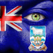 Face with Falkland Islands flag — Stock Photo