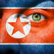 Flag painted on face  to show North Korea support — Stock Photo