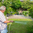 Foto Stock: Senior man watering his garden