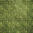 Green seamless grunge texture with floral patterns — Stock Photo #19209251