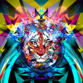 Head of tiger — Stock Photo