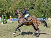 A girl riding a horse. — Stock Photo