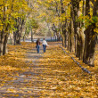 Walk in the autumn park. - Stock Photo