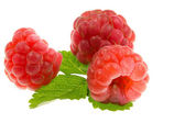 Red ripe raspberries. — Stock Photo