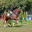 Stock Photo: Sporting event. show jumping