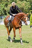Mulher cavalgando um cavalo. — Foto Stock