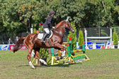 Sporting event. show jumping — Photo