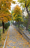 Autumn. Street of the city. — Stock Photo