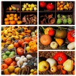 Stock Photo: Pumpkins and summer and winter squashes