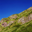 Fragment of a Northern Irish cliffs overgrown with grass — Stock Photo #38401853