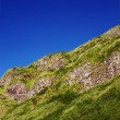 Fragment of a Northern Irish cliffs overgrown with grass — Stock Photo