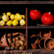 Stock Photo: Composition of pumpkins and summer and winter squashes