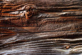 Natural details of sun dried wood — Stock Photo