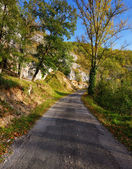 A rural road on a sunny autumn day — Stock Photo