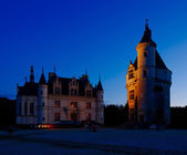 Castle of Chenonceau, Loire Valley, France — Foto de Stock