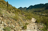 Piestewa. Squaw Peak Panoramic — Stock Photo