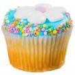 Easter Cupcake — Stock Photo #24518643