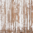 Old Fence — Stock Photo #31374993