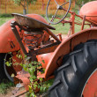 Antique Tractor — Stock Photo