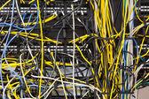 Tangled Network — Stock Photo