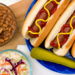 Gegrilde hotdogs — Stockfoto #46976681