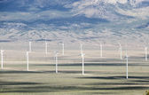 Wind farm electric generators — Stock Photo