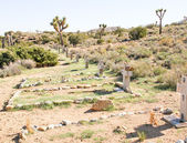 Desert Cemetery — Stock Photo