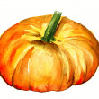 Stock Photo: Watercolor pumpkin
