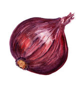 Red onion — Foto Stock