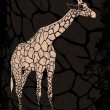 Stock Vector: Giraffe on grunge texture