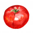 Red tomato — Stock Photo
