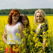 Stock Photo: Beautiful girls on rapeseed field
