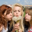 The three girls blow away dandelion — Stock Photo
