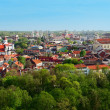 Stock Photo: Panoramof Vilnius