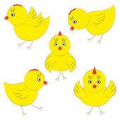 Vector cute yellow chicks — Stock Vector
