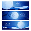Landscape full moon in the sky — Stock Vector