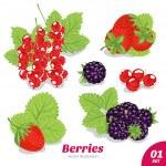 Set of strawberries, blackberries, red currants — Stock Vector #23516351