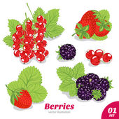 Set of strawberries, blackberries, red currants — Stock Vector