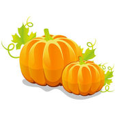 Two vector pumpkin — Vettoriale Stock