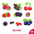 Vector set of juicy berries — Stock Vector #32465547