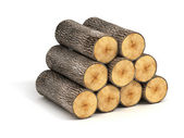 Stack of firewood logs on white background — Photo