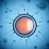 Human sperm cells around egg cell — Stock Photo