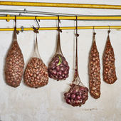 Onions in the tights hanging on the pipe, wall background — Stock Photo