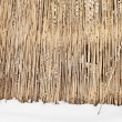 Fence of dry cane in winter — Stock Photo