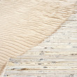 Wooden plank path — Stock Photo
