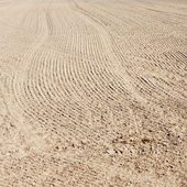 Soil of an agricultural field — Stock Photo