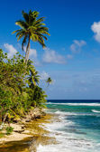Coastline of San Andres Island in Colombia — Stock Photo