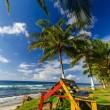 banc coloré sur la côte Caraïbe — Photo