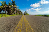 Low View of Coastal Road — Stock Photo