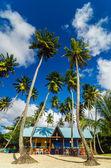 海滩小屋和棕榈树 — 图库照片